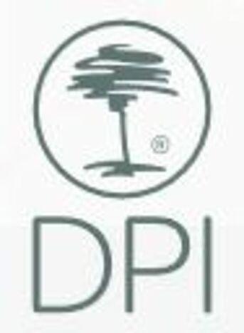 csm_DPI_Logo_2342cdfd17